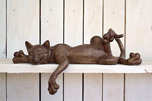 Unbekannt Katze Charly Liegend