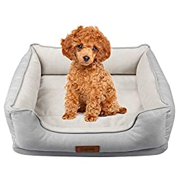 Onarway Dog Bed Luxurious Short Granular velvet Pet Sofa Soft Breathable Full Cotton With Detachable Memory Foam Cushion