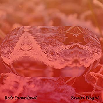 Brain Flight (Radio Edit)