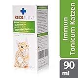 RECOACTIV Immun Tonicum für Katzen, 90 ml, zur Vorbeugung und Immunstärkung der Katze, wirkungsvoller diätischer Appetitanreger für Katzen bei Appetitlosigkeit