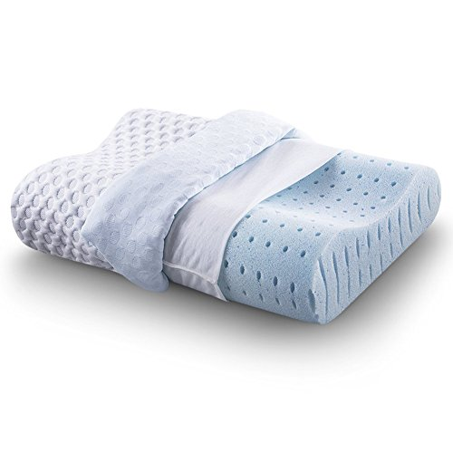 CR COMFORT & RELAX Ventilated Memory Foam Contour Pillow with AirCell...