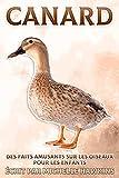 Canard: Des faits amusants sur les oiseaux pour les enfants #23