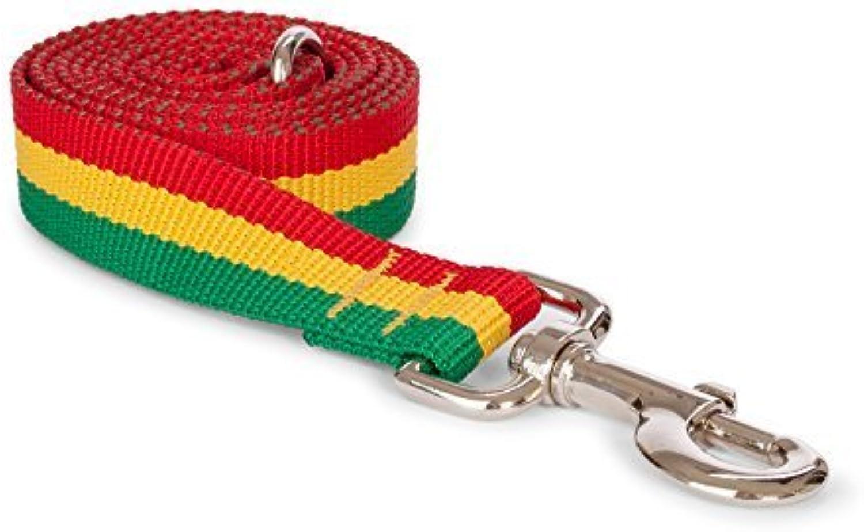 Fab Dog Rasta Dog Leash, Red, Yellow, & Green, 5 8  x 5 ft by Fab Dog