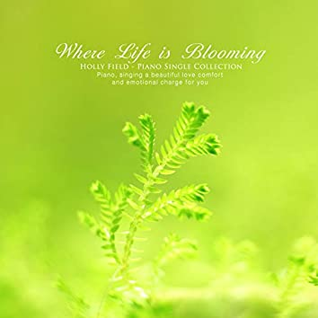 Where life flourishes