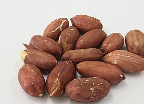 ピーナッツ 渋皮付き 素焼き ロースト 無塩 1kg ヨコイピーナッツ 名古屋