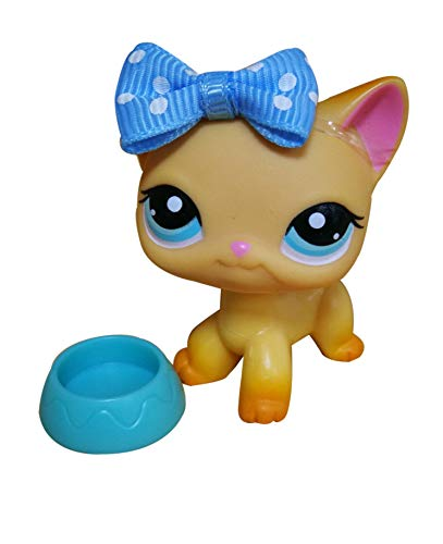 LPSOLD Old LPS Shorthair Cat 339 Yellow Blue Eyes with Magnet Clear Peg with Accessories Toys Figure Collection Rare Girl Boy Gift (lps Shorthair cat 339)