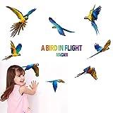 artaslf 8 piezas Set Color 3D Guacamayo Pegatinas de pared Flying Macaws Cartel extraíble Letra A BIRD IN FLIGHT Pegamento Adorno DIY