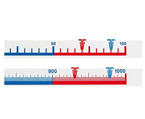 Betzold 81902 - Schüler-Zahlenstrahlband, 1 bis 100 – Zahlenraum bis 100, Mathematik, Rechnen Lernen