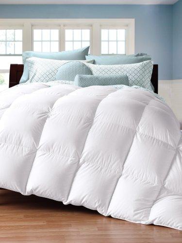 Cuddledown 450 Thread Count Down Comforter, Oversize King, Level 1