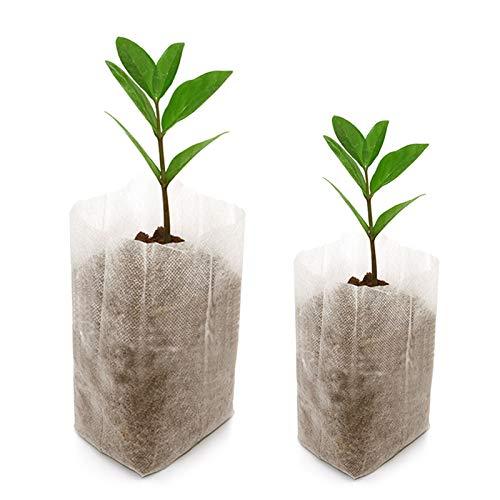 Lot de 200 sacs biodégradables Tissu non tissé pour plantes semis Sacs de croissance d'élevage (14 x 16 cm + 10 x 12 cm)