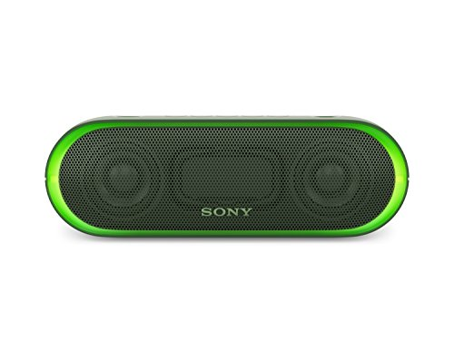 Sony SRS-XB20G - Altavoz inalámbrico portátil (Bluetooth, NFC, Extra...
