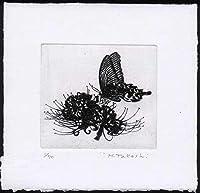 蝶と曼珠沙華銅版画・エッチング、作品のみ コレクション