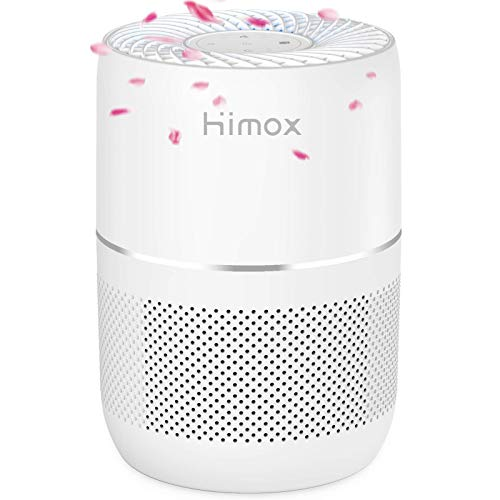 Himox H08 Purificador de Aire Hogar 4 en 1 con HEPA Filtro y Carbón Activado,Aromaterapia Silencioso, 3 Niveles de Filtro contra 99,97% de Polvos, Alergías, Olores, Caspa de Mascota