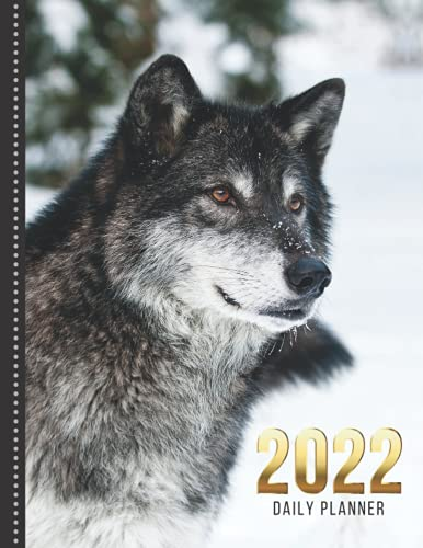 2022 Daily Planner: Wolf in Snow Art Photo - Animal Lover Series / One Page Per Day Diary / Large 365 Day Journal / Date Book With Notes Section - To ... Time Slots - Schedule - Calendar / Organizer