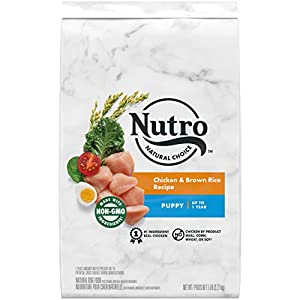 NUTRO NATURAL CHOICE Puppy Dry Dog Food, Chicken