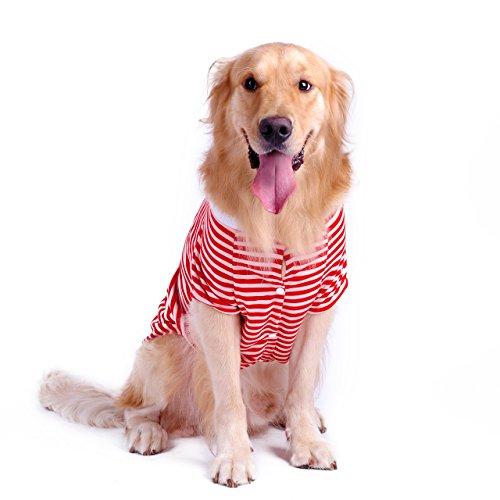 Petroom Large Dog Striped T-Shirt