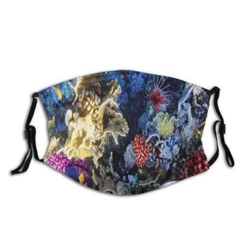 Generic Brands Ocean Colorful Coral Reef Fishes Coly Sea Underwer Life Gesichtsbedeckung Mundbedeckung Atemschutz Stirnband Kopftuch Wiederverwendbar Speichel Staub Pollen Nebel Dunst Sport Outdoor