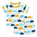 Fansu Pijamas de Manga Corta para Niños y Niña, Pijamas Dos Piezas Bebé Verano Suave y Cómoda Ropa Algodón de Ajuste Juego de Pijama Camisetas y Pantalones (110cm(48M),Hipopótamo Azul)