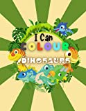 I Can Colour Dinosaurs: Dinosaur Colouring Book: Kids Activity Book: 50 Easy Designs