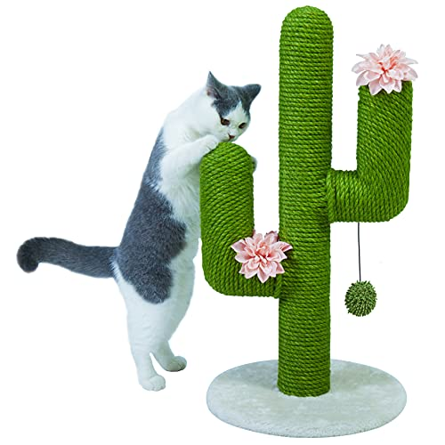 BingoPaw - Tiragraffi grande per gatti, a forma di cactus, in sisal, tiragraffi per gatti, ideale per arrampicarsi su albero con palla da gioco per gattini