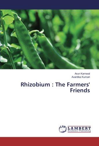 Rhizobium : The Farmers' Friends