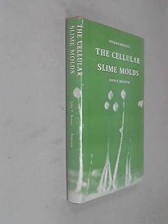 Cellular Slime Molds