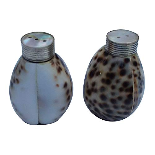 India Meets India Salt & Pepper Shaker Set of 2 with Handcrafted Sea Shell Work   30 ML