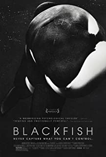 Best blackfish movie poster Reviews