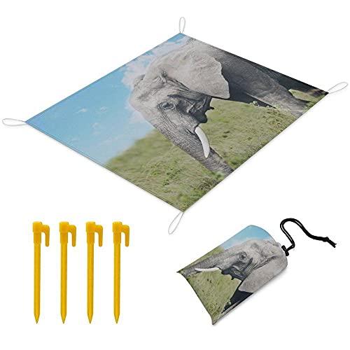 Manta Picnic 170x145 cm Alfombra de Playa con 1 Bolsas y 4 Clavos Fijos Impermeable Plegable Camping Accesorios para la Playa Camping y Picnic - Elefante Gris
