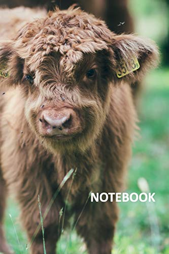 Notebook: Aberdeen Angus Terrific Composition Book Daily Journal Notepad Diary Student for...