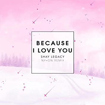Because I Love You (Ny-On Remix)