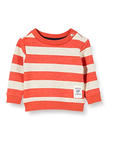 Noppies Baby-Jungen B Sweater ls Archdale AOP/STR Sweatshirt, Mehrfarbig (Paprika P537), (Herstellergröße: 68)