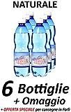 LAURETANA Mikrobiologisch reines natürliches Mineralwasser (Sales & Service - Angebot) Pack A