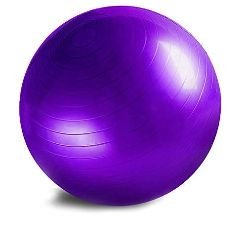 BANLV 2 Piezas Balance Fitness Ball Yoga Ball Engrosado a Prueba de explosiones Fitness Home Gym Pilates 65cm
