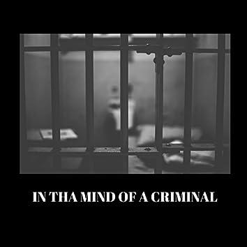 Mind of a Criminal