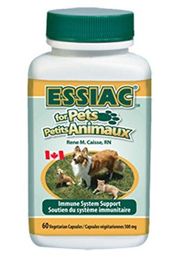 Essiac für Haustiere Unterstützung des Immunsystems, 60 Kapseln (500 mg) Essiac for Pets Immune System Support, 60 capsules (500mg)