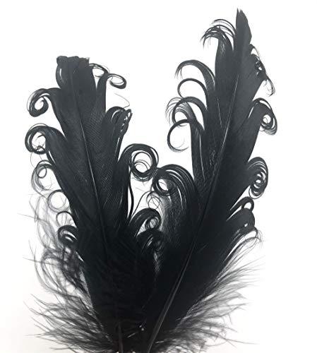 ERGEOB® Ganso Natural decoración de Plumas Primavera Rizado 20 Piezas, 10-15 cm de Largo, Ideal para Trajes, Sombreros artesanía, decoración del hogar, Bricolaje, etc.