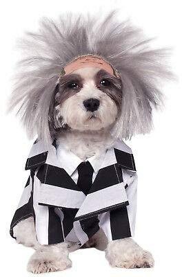 FidgetKute Beetlejuice Pet Dog Costume Show One Size