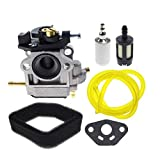 AUTOKAY Carburetor Air with Fuel Filter kit for Toro 51930 51932 51934 51930B 51932B Trimmer