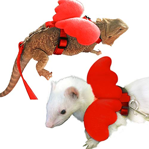 FunPetLife Small Pet Animal Harness and Leash Angel Wings for Bearded Dragon Reptile Lizard Gecko Baby Ferret Chinchilla Mouse Chipmunk Squirrel Gerbil Degu Rat-Red