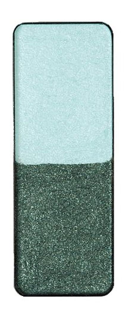 調べるブースト何かヴィザージュ ツインカラー 0905 ライトブルー/ピーコックブラック