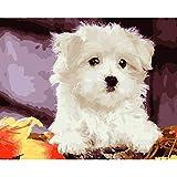 FBDBGRF Pintar por Número Lindo Cachorro para Adultos Y Niños DIY Kit De Regalo De Pintura Al Óleo con Juego De Pintura Digital para Decoración del Hogar Lienzos para Pintar