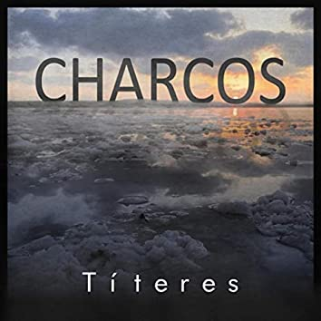 Charcos (feat. Javier Valdivieso Bermejo)