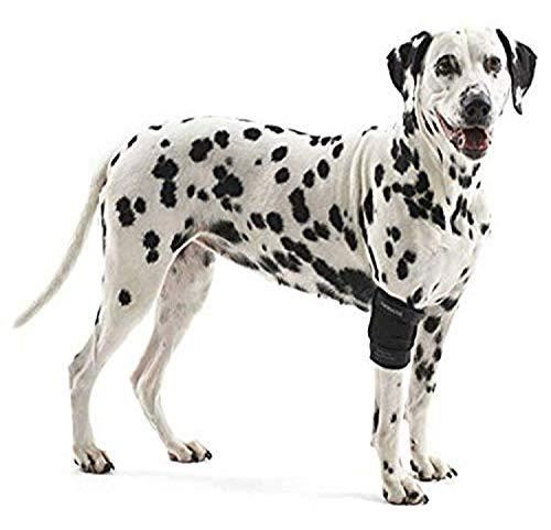 Kruuse Rehab Ellenbogenschutz für Hunde