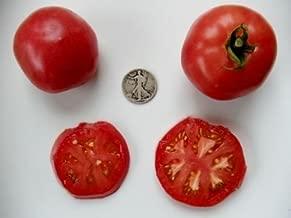 Rose De Berne - Organic Heirloom Tomato Seeds - Premier Slicer - 40 Seeds