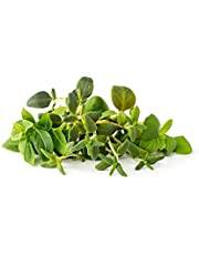 Click & grow italiaanse kruidenmix 9 vullingen
