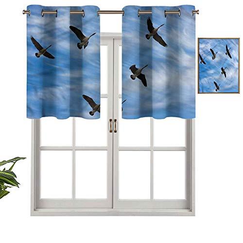 "Hiiiman Premium Grommet Valance Curtain Panel Flock of Canada Birds Spring, Set of 1, 42""x18"" for Indoor Decoration"