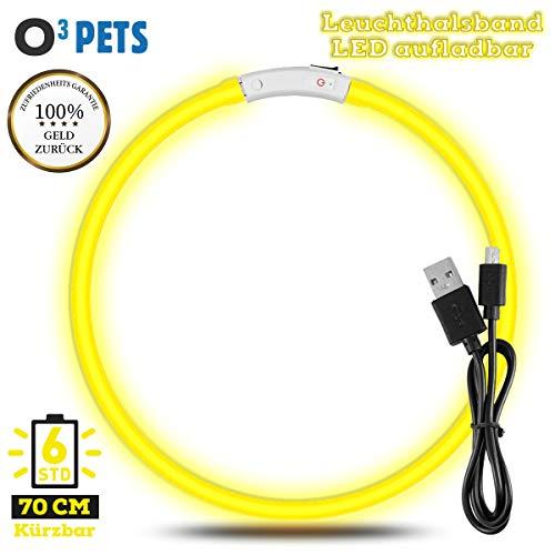 O³ Pets Leuchthalsband Hund // Leuchtendes wiederaufladbares Hundehalsband // Individuell kürzbar + wasserdicht wählbar // USB-LED Trainingshalsband (Gelb)