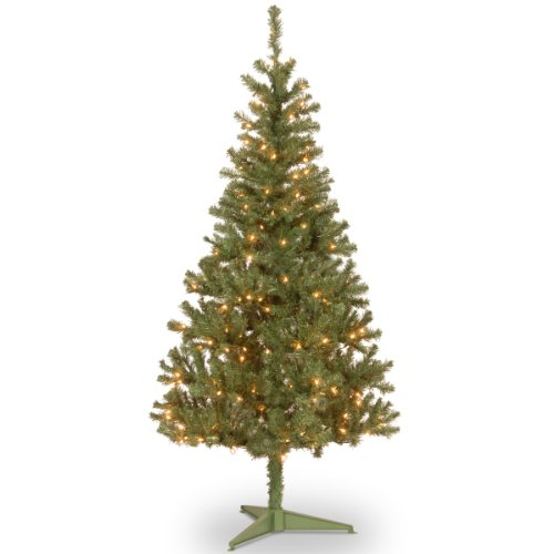 National Tree 6 Foot Canadian Grande Fir Wrapped Tree with 200 Clear Lights (CFG7-300-60)