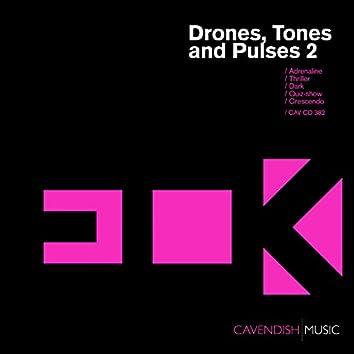 ECK / Drones, Tones and Pulses 2
